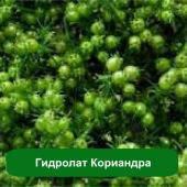 Гидролат Кориандра, 1 литр