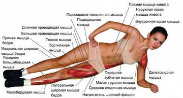 Планка. Як правильно виконувати вправи