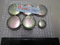Заглушка блока цилиндров ВАЗ 2101 (компл. 5+1) . 14329901/14328901
