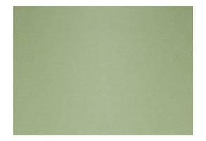 Бумага для пастели B2 160г/м2 TIZIANO, №14 Оливковый, Fabriano