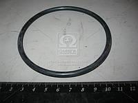 Кольцо гильзы (покупн. МТЗ). 52-2308091-А