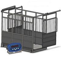 Ваги для тварин (худоби) AXIS 4BDU3000Х-1520-Р-Б розсувні двері