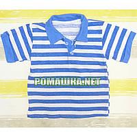Детская футболка-поло для мальчика р. 74 ткань КУЛИР 100% тонкий хлопок ТМ Белоснежка 3111 Голубой