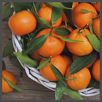 Ароматизатор TPA Orange Mandarin, фото 1
