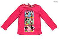 Кофта Minnie&Mickey Mouse для девочки. 2, 4, 6, 8 лет, фото 1