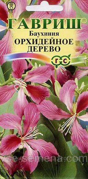Баухиния Орхидейное Дерево, семена