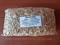 Мицелий ВЁШЕНКИ обыкновенной, штамм НК-35, высокоурожайный, малоспоровой универсальный