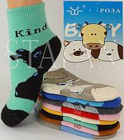 Детские носки на махре DZ-03-15 S 10-14 Z. В упаковке 12 пар, фото 1