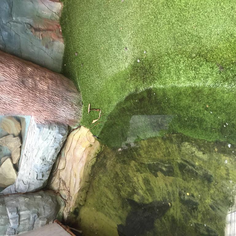 трава искусственная для террариума АС ОБЛИК