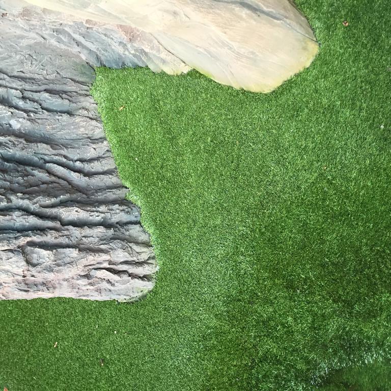 искусственная трава в террариуме