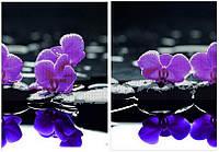 Схема для вышивания бисером Диптих.Отражение.Яркие орхидеи КМД 2004