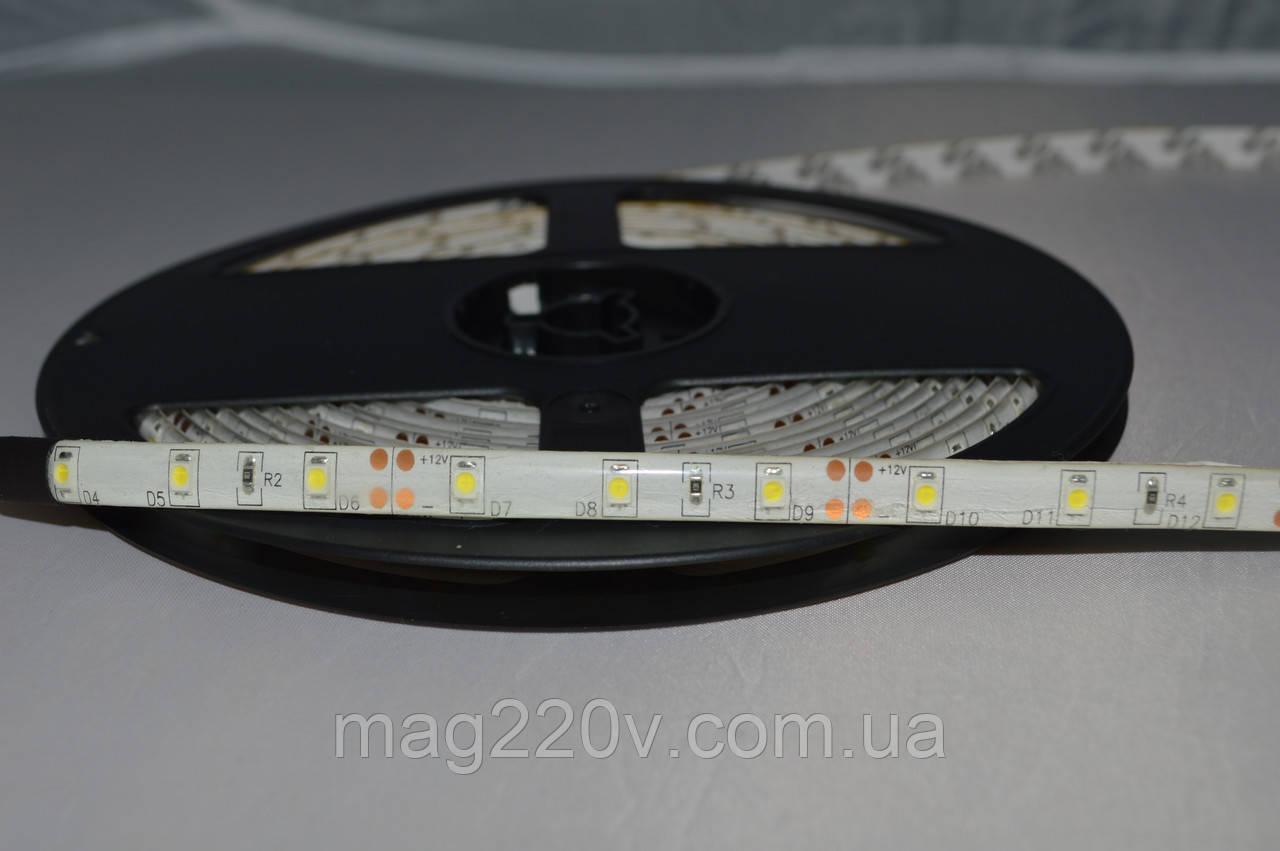 LED лента SMD3528 60 D/m IP 65 ( CW )