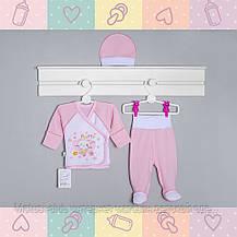 Костюм-Набор для Девочки, в роддом рукав-нецарапка, 0-3 месяцев, Хлопок-Ажур летний, В наличии _56_62 Рост, фото 3