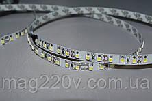 LED лента SMD3528 120 D/m IP 20 ( CW )