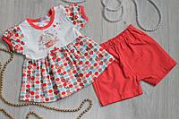 Ясельный костюм для девочки Кексик платье и шорты на возраст 6 мес, 9 мес, 12 мес