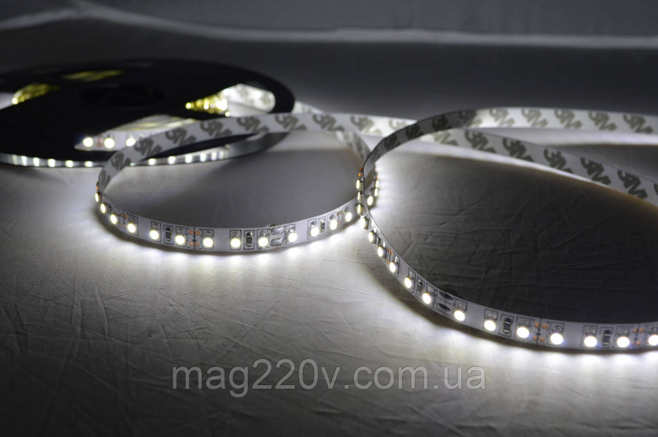 LED лента SMD3528 120 D/m IP 65 ( CW )