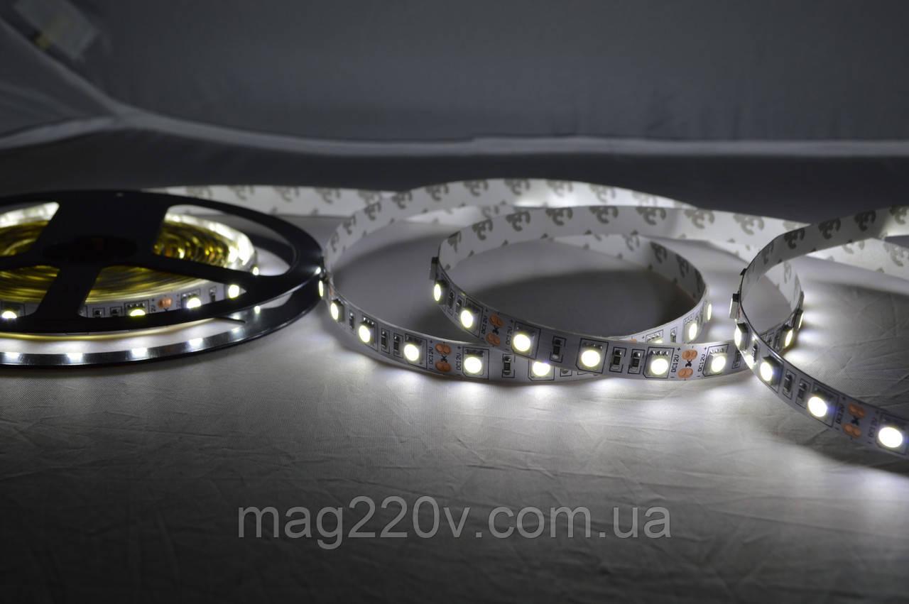 LED лента SMD5050 60 D/m IP 20 ( CW )