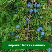 Гидролат Можжевельник, 1 литр