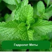 Гидролат Мяты, 1 литр