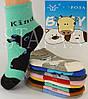 Детские носки на махре DZ-03-15 M 11-16 Z. В упаковке 12 пар