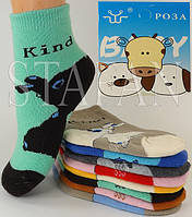 Детские носки на махре DZ-03-15 M 11-16 Z. В упаковке 12 пар, фото 1