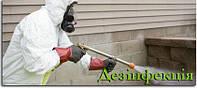 Уничтожение вредителей: тараканов, клопов, блох, крыс, мышей в Виннице