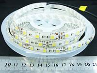 Светодиодная лента 5050-60-IP65-CWd-10-12 R6060AA (7366)