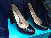 Туфли кожа на каблуке рептилия, классические кожаные туфли