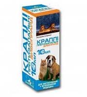 Дивопрайд - капли противовоспалительные для глаз и носа собак и кошек, 10 мл