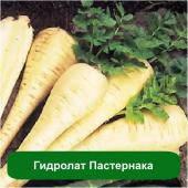 Гидролат Пастернака, 1 литр