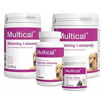 Dolfos Multical - витаминно-минеральный комплекс Дольфос Мультикаль, 90таб