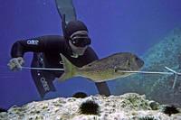 Подводная охота в Крыму