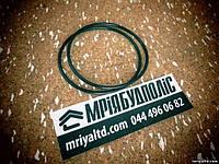PUTZMEISTER 013292009 042341002 резиновые кольца передней опоры шибера для бетононасоса