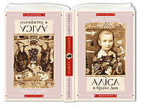 Книга Аліса в Країні Див, Аліса в Задзеркаллі