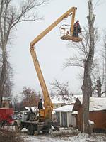 Удаление деревьев Обрезка деревьев Корчевание пней. покос травы.