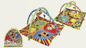 Детский коврик с игрушками 898-307B/308B: 2 вида, 80х80 см, 4 игрушки, зеркало, сумка