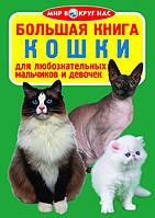 БАО Большая книга. Кошки