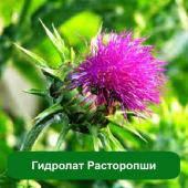 Гидролат Расторопши, 1 литр