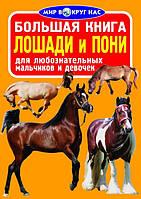 БАО Большая книга. Лошади и пони