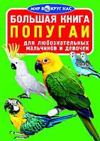 БАО Большая книга. Попугаи