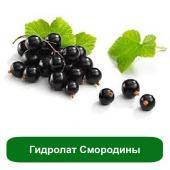 Гидролат Смородины, 1 литр