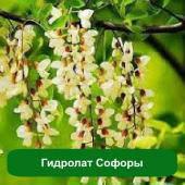 Гидролат Софоры, 1 литр