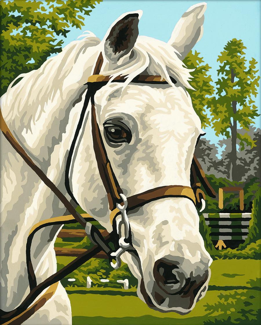 Картина по номерам «Schipper» (9240394) Белая лошадь, 24х30 см