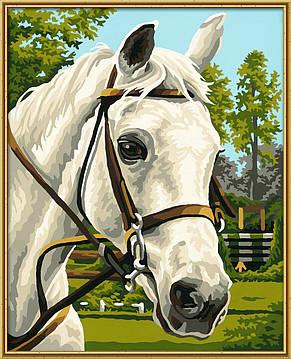 Картина по номерам «Schipper» (9240394) Белая лошадь, 24х30 см, фото 2