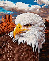 """Картина по номерам «Schipper» (9240665) художественный творческий набор """"Белоголовый орлан"""", 24х30 см"""