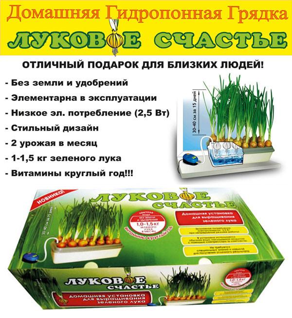 Проращиватель лука, домашняя грядка, луковое счастье - Моток в Одессе