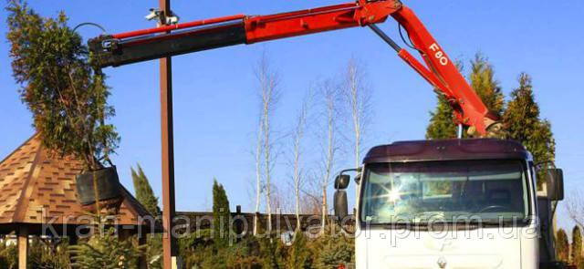 перевозка деревьев днепр