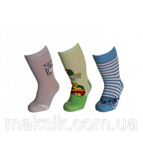 Детские носки  Дюна  р.8-24, фото 2