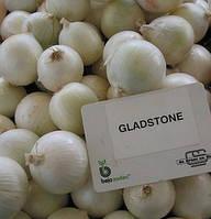 Семена лука белого репчатого Гледстоун 10 000 шт