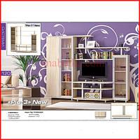 Стенка  Рио 3  (Мебель Сервис)